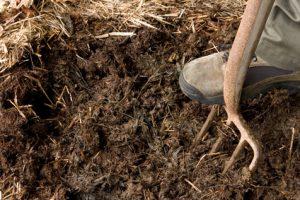 rich organic mulch